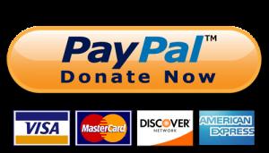 PayPalDonateNow1